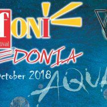 Џифони Македонија отвори повик за пријавување за шестото издание