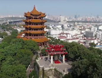 (видео) Како се започна? Сторија за Вухан и Коронавирусот